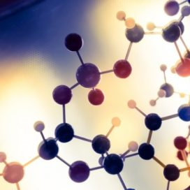 Wat vraagt 'science based HR' van ú?
