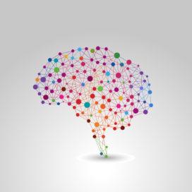 HR als katalysator van het lerend vermogen: 5 tips