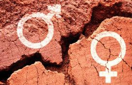 Hoe dicht HR de kloof tussen man en vrouw?