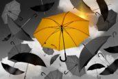 Hoe HR-beleid de eigen organisatie ondermijnt