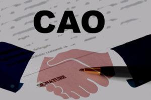 Cao's nodig voor interne flex en duurzame inzetbaarheid